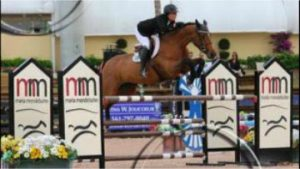 Jockey and Horse in jumping tournament
