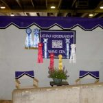 Horsemanship award ribbons