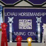 Horsemanship training award ribbons